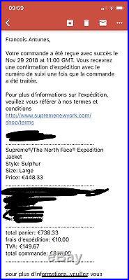 Supreme The North Face Expedition Jacket Sulphur L