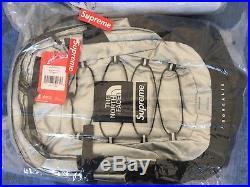 Supreme/ The North Face Metallic Borealis Silver Backpack/Sac à dos Argenté