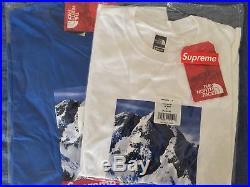 Supreme/The North Face Mountain T-Shirt Blue/Bleu Size Medium/Taille Médium