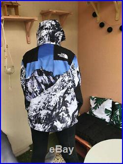 Supreme x The North Face Mountain Parka Blue/White