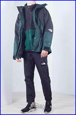 THE NORTH FACE Men's green Mountain Light DryVent printed jacket